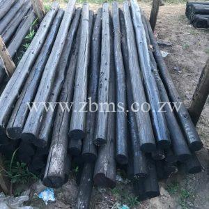 100mm - 125mm by 1.5m 1.2m 1.8m 2.1m 2.4m 2.7m 3m 4m 5m 6m treated poles for sale harare zimbabwe