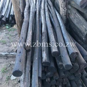 50mm - 75mm by 0.5m 1m 1.5m 1.2m 1.8m 2.1m 2.4m 2.7m 3m treated poles for sale harare zimbabwe